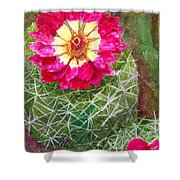 Pincushion Cactus Shower Curtain