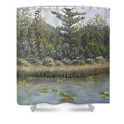 Pine And Lily Pads 2  Shower Curtain