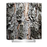 Pine Bark Shower Curtain