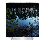 Pine Barren Reflections Shower Curtain