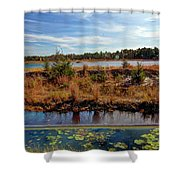 Pine Barrens Bog In New Jersey Shower Curtain