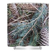 Pine Cone Brush Shower Curtain