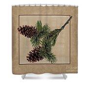 Pine Cone Design Shower Curtain