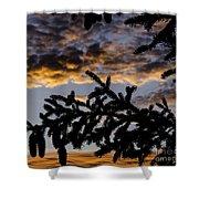 Pine Cone Sunset Shower Curtain