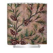 Pine Cones And Spruce Branches Shower Curtain by Nancy Mueller