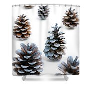Pine Cones Looking Like Christmas Trees On White Snowy Backgroun Shower Curtain