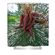 Pine Flowers Shower Curtain