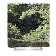 Pine Lake 391 Shower Curtain