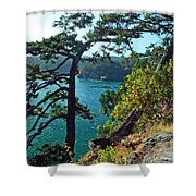 Pine Over The Bay Shower Curtain
