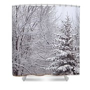 Pine Tree - Winter Scene Shower Curtain