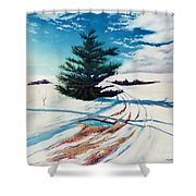 Pine Tree Along The Country Road Shower Curtain