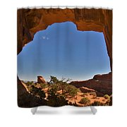 Pine Tree Arch 2 Shower Curtain