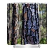 Pine Tree Bark Shower Curtain