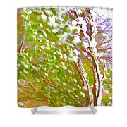 Pine Tree Covered With Snow Shower Curtain by Lanjee Chee
