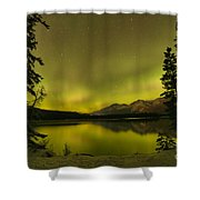 Pine Tree Silhouettes Shower Curtain