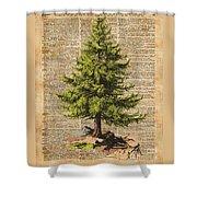 Pine Tree,cedar Tree,forest,nature Dictionary Art,christmas Tree Shower Curtain