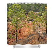 Pine Trees And Forest Shower Curtain