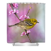 Pine Warbler Shower Curtain