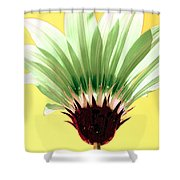 Pineapple Flower Shower Curtain