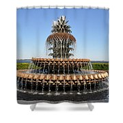 Pineapple Fountain In The Park Shower Curtain