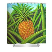 Pineapple Painting #332 Shower Curtain