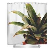 Pineapple Top- Art By Linda Woods Shower Curtain