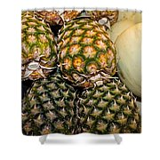 Pineapples And Melons Shower Curtain