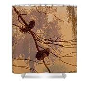 Pinecone Overlay Bright Horizontal Shower Curtain