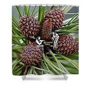 Pinecone Rock 1 Shower Curtain