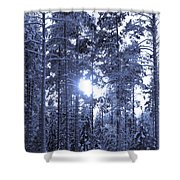 Pines 4 Shower Curtain