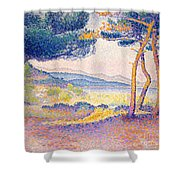Pines Along The Shore, 1896 Shower Curtain