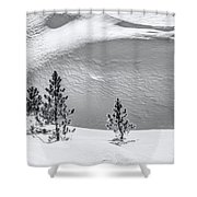 Pines In Snow Drifts Black And White Shower Curtain