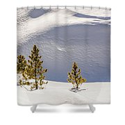 Pines In The Snow Drifts Shower Curtain