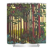 Pines Of Nisqually Shower Curtain