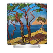 Pines Of The Silver Beach Shower Curtain