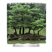 Pines On Island In The Gardens Shower Curtain