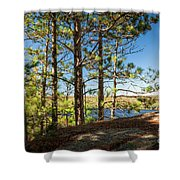 Pines On Sunny Cliff Shower Curtain