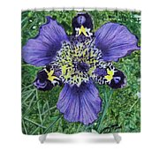 Pinewoods Lily Shower Curtain