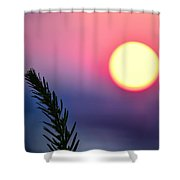 Pining On The Rise Shower Curtain