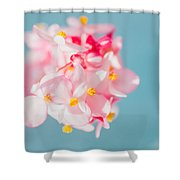 Pink And Baby Blue Shower Curtain