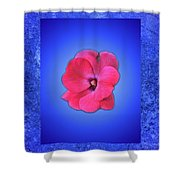 Pink And Blue Shower Curtain