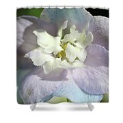 Pink And Blue Pastel Flower Shower Curtain