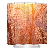 Pink And Gold Shower Curtain