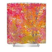 Pink And Orange Autumn Shower Curtain