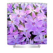 Pink And Purple Spring Shower Curtain