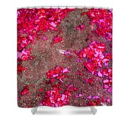 Pink And Red Firecracker Debris Abstract Shower Curtain