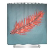 Pink And Teal Feather Shower Curtain