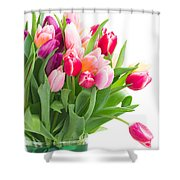 Pink And Violet Tulips Bouquet  Shower Curtain