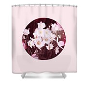 Pink And White Anemones Shower Curtain