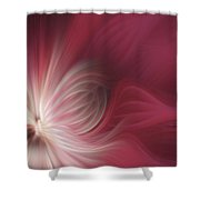 Pink And White Flower 0610 Shower Curtain